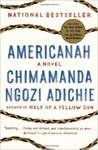 Americanah: A Novel