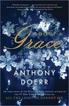 About Grace: A Novel by Anthony Doerr