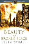 Beauty in a Broken Place