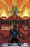 Black Panther: Avengers of the New World, Part One