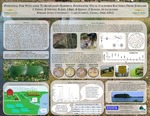 Potential for Wetlands to Remediate Harmful Pathogenic Fecal Coliform Bacteria from Streams