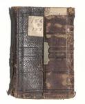 Milton Wright Diaries: 1869-71