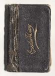 Milton Wright Diaries: 1901
