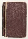 Milton Wright Diaries: 1906