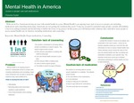 Mental Health in America: Access to Proper Care and Medication by Victoria Ceyler