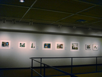 Art/Science: The Photography of David Goldes 013 by David Goldes