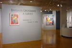 Barbara Grossman: A Survey 001 by Barbara Grossman