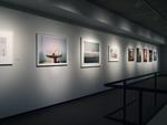 Photography Now: One Hundred Portfolios 008