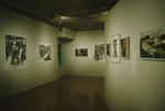 Faculty Exhibit 006