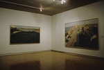 David Gloman and Richard Raiselis: Landscapes 010 by David Gloman and Richard Raiselis