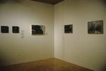 David Gloman and Richard Raiselis: Landscapes 011