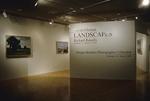 David Gloman and Richard Raiselis: Landscapes 012