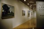 David Gloman and Richard Raiselis: Landscapes 013