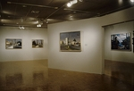 David Gloman and Richard Raiselis: Landscapes 014