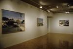 David Gloman and Richard Raiselis: Landscapes 015