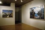David Gloman and Richard Raiselis: Landscapes 020