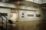 David Gloman and Richard Raiselis: Landscapes 034