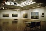 David Gloman and Richard Raiselis: Landscapes 037
