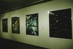 Photo 1990's 019