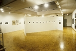 View Art Galleries 008