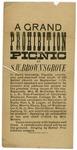 A Grand Prohibition Picnic at S.W. Brown's Grove
