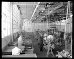 Dayton-Wright Airplane Company employees manufacturing aircraft parts by The Dayton-Wright Airplane Company