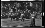 An ox cart in the parade during the 1909 Wright Brothers Homecoming Celebration in Dayton by Andrew S. Iddings