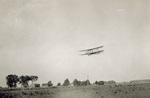 Wright Model F Flyer in flight over herd of cattle