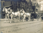 Wright carriage drawn by four white horses
