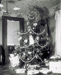 Christmas Tree in the Wright Home