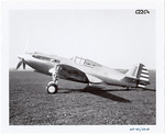 Curtiss XP-40