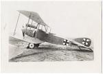 Albatross CV II