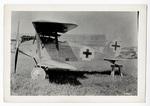 Albatros D XII