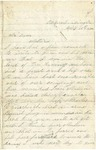 Letter from William Patterson to his mother Julia on April 10, 1862