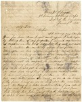 Letter from William Patterson to his mother Julia dated June 7, 1863 by William Patterson