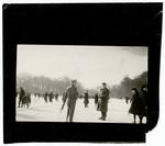 Group of people skating and walking