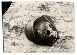 Skull in a helmet
