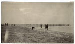 Four boys playing on beach