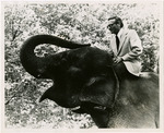 Photograph of Charles Horn, Kettering Mayor, Riding an Elephant