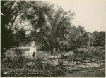 Lily Pond, Fountain, and Lake at the National Military Home of Dayton by Keyes Souvenir Card Company