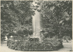 Fountains and Palms in the Grotto at the National Military Home of Dayton by Keyes Souvenir Card Company