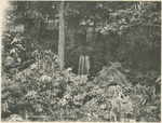 Waterfalls in Grotto at the National Military Home of Dayton by Keyes Souvenir Card Company