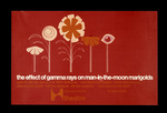 The Effect of Gamma Rays on Man-in-the-Moon Marigolds by Abe J. Bassett