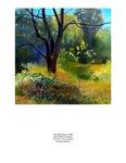 VI. Barolo Landscape Studies: Barolo MGA 360º Vermeer Rilke